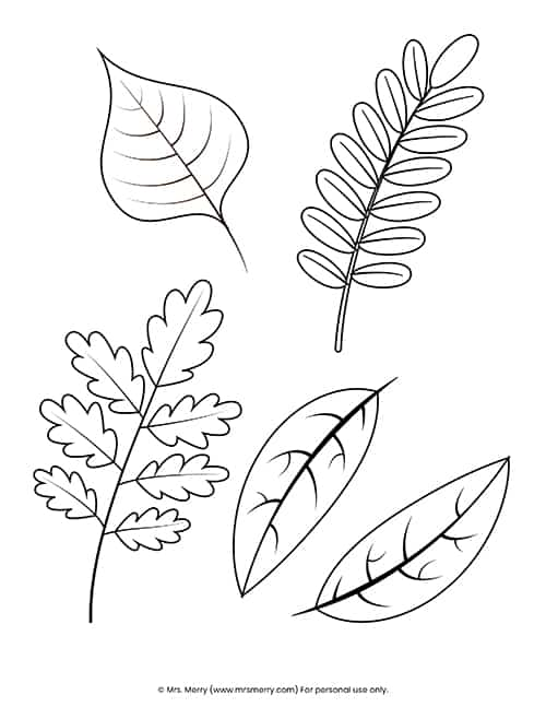Free Printable Fall Leaves Coloring Pages - Mrs. Merry